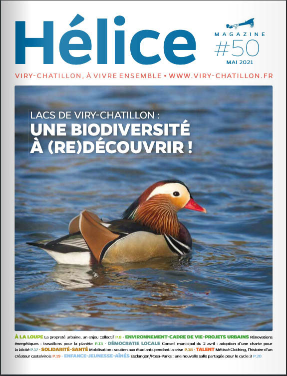 Helice_50_couverture