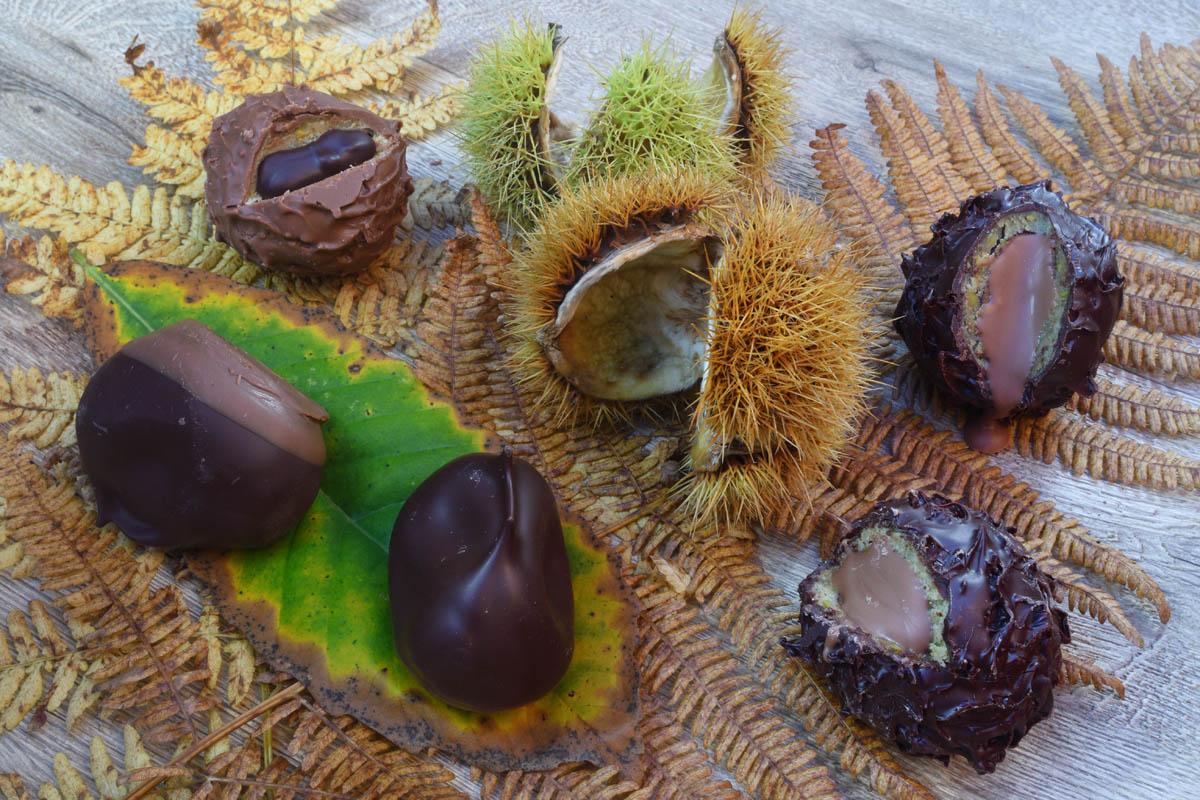 Chocolat_5