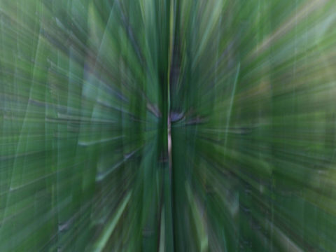 Zooming_4